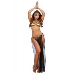 Costume sexy de danseuse Orientale / lavenuedesplaisirs.com